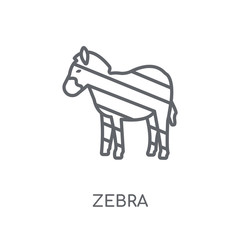 Zebra linear icon. Modern outline Zebra logo concept on white background from animals collection