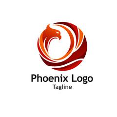 Creative Phoenix Logo Vector