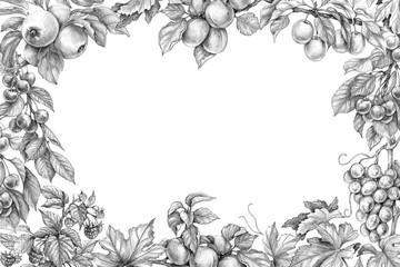 Fruit Horizontal Frame Pencil Drawing