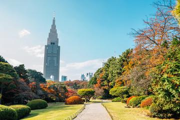 Shinjuku Gyoen park at autumn in Tokyo, Japan