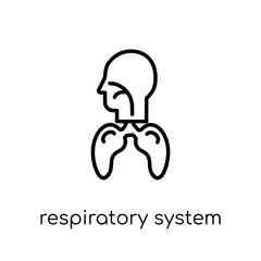 Respiratory System icon. Trendy modern flat linear vector Respiratory System icon on white background from thin line Human Body Parts collection