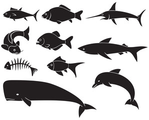 fish icons set - black silhouettes (dolphin, carp, shark, whale, swordfish, piranha)