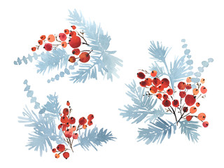 Collection of watercolor arrangements of Christmas evergreens. Spruce and red berries