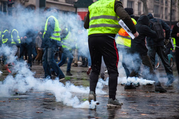 """gilets jaunes"" (yellow vests)"