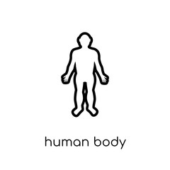 Human body standing black icon. Trendy modern flat linear vector
