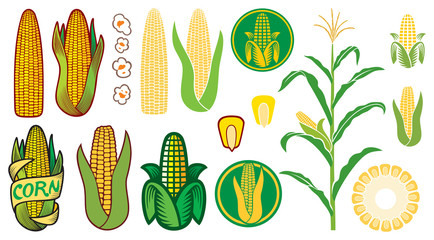 corn vector icons set (grain or seed, stalk, popcorn, corncob) Fototapete