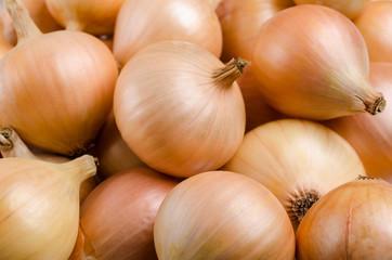 Pure organic raw onion Wall mural