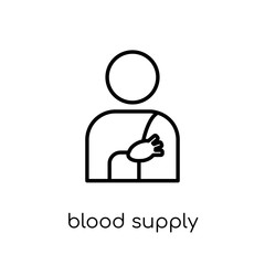Blood Supply System icon. Trendy modern flat linear vector Blood Supply System icon on white background from thin line Human Body Parts collection