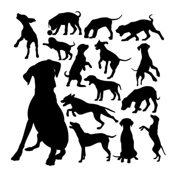 Collection of dalmatian dog silhouettes. Good use for symbol, logo, web icon, mascot, sign, or any design you want.