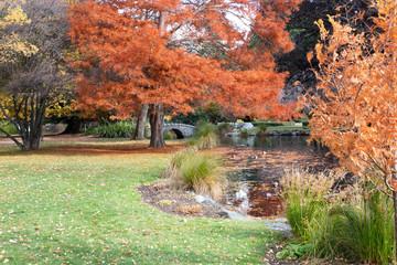 Bridge and pond, Queenstown Gardens