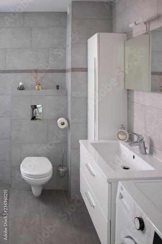 Salle De Bain Moderne Avec Wc Dans Les Tons Gris Et Blancs Et Dans Le Style