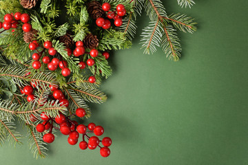 Christmas tree branches, pinecones and holly on green background. Free space for text