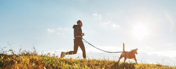 Canicross exercises. Man runs with his beagle dog at sunny morning. Healthy lifestyle concept. Wall mural