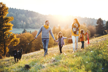 A young family with two small children and a dog on a walk on a meadow at sunset.