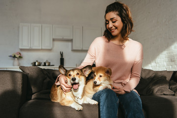 beautiful smiling woman sitting on sofa with welsh corgi dogs at home