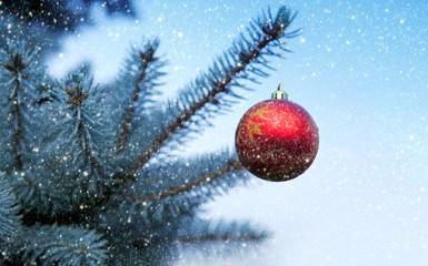 Christmas Ball hanging on a Fir Tree Branch. Christmas Background.