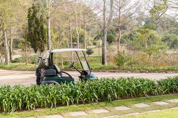 golf, cart, grass, car, green, sport, lawn, course, mower, club, golf cart, electric, golfing, leisure, summer, transportation, nature, game, field, golf course, vehicle, buggy, transport, cut, landsc