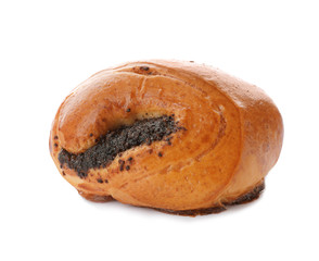 Freshly baked poppy seed bun isolated on white