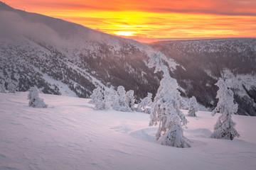 Foto op Plexiglas Lavendel mountains, giant, czech, winter, mountain, krkonose, snow, karkonosze, landscape, panorama, karpacz, nature, sky, snowy, white, sun, travel, cold, blue, view, europe, outdoor, day, scenery, ski, valle