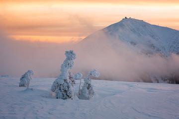 Fototapeta mountains, giant, czech, winter, mountain, krkonose, snow, karkonosze, landscape, panorama, karpacz, nature, sky, snowy, white, sun, travel, cold, blue, view, europe, outdoor, day, scenery, ski, valle obraz