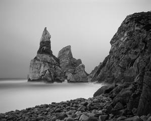 Moonlit Ursa beach