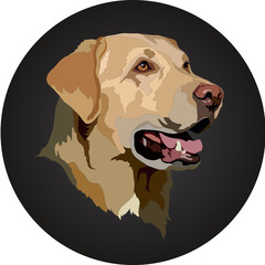 Head of a Labrador Retriever dog portrait. Vector illustration