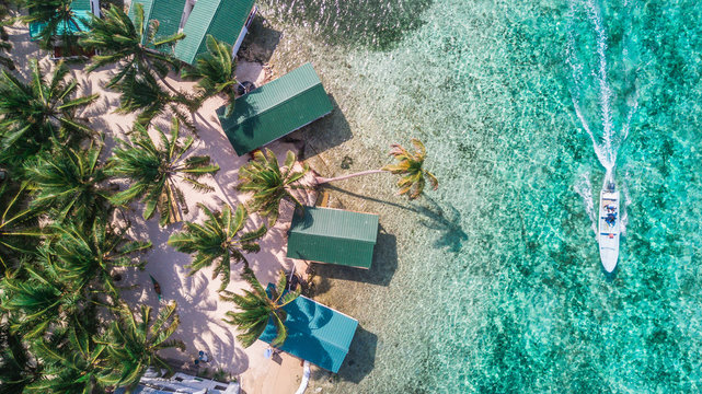 Aerial drone view of Tobacco Caye small Caribbean island with palm trees and bungalows in the Belize Barrier Reef