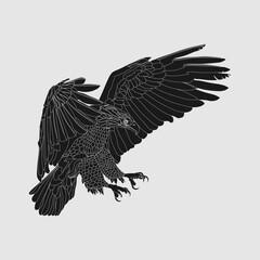 realistic dark eagle, soaring eagle, catching prey