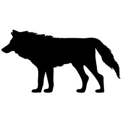 black and white vector silhouette of wolf. Animal illustration