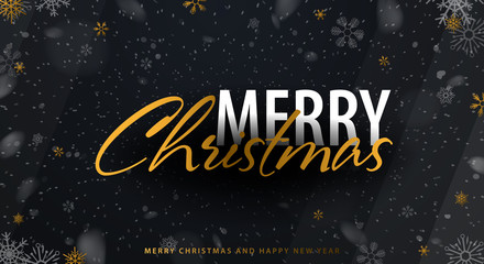 Merry Christmas and Happy New Year. Background with snowflakes. Vector illustration.
