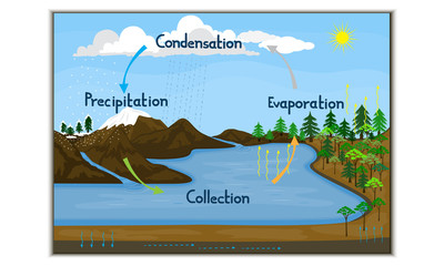 Water cycle in nature-Rectangle