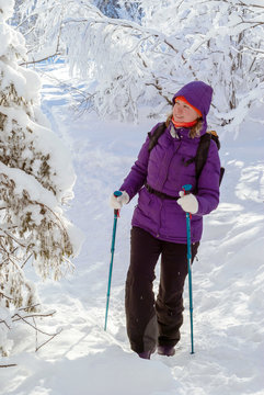 young attractive woman walking in a snowy winter forest with trekking poles