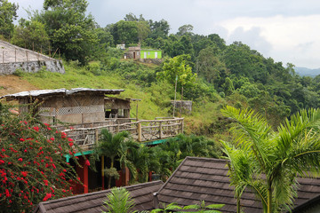 Houses and shacks nestled among the lush, green foliage that covers the hillside, Nine Mile, Jamaica