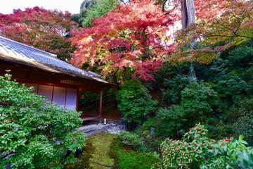 京都の紅葉の庭園と大文字