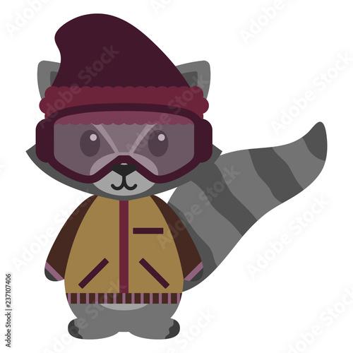341b8ac1756 Raccoon in Winter Clothes - Raccoon wearing purple beanie hat
