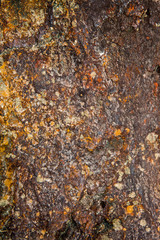 granite texture and Stones background.
