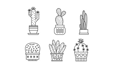 Collection of cactuses and succulents, linear houseplants in pots vector Illustration on a white background