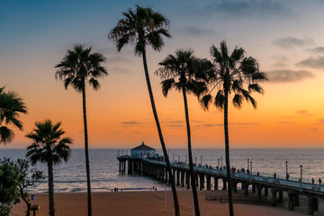 California beach. Palm trees on Manhattan Beach at sunset in Los Angeles, California, USA.