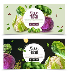Realistic Vegetables Banners Set