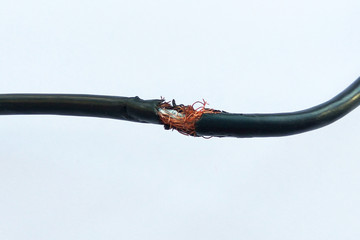 Damaged black electric cord on white background. Dangerous broken power electrical cable