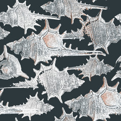 Background with seashells  in grunge style. Perfect for print on fabric, wrapping paper etc.