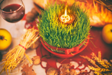 Christmas wheat.Orthodox Christmas decoration.