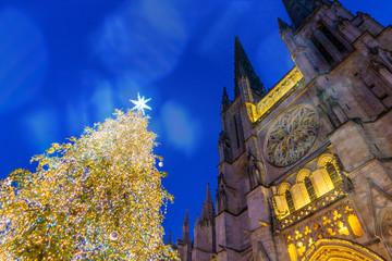 Fototapete - Sapin de Noël devant la Cathédrale Saint-André de Bordeaux la nuit, Nouvelle-Aquitaine en France