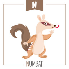 Vector Illustration Of Alphabet Letter N And Numbat