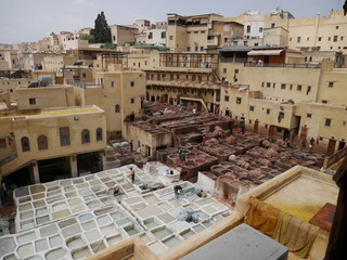 Panorama of the tannery in the medina of Fez, Morocco, with several workers dyeing leather in chemicals, historical craft in between old houses