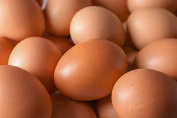 Raw chicken eggs, closeup