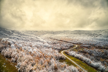 Aerial view of snowy forest with a road in the area of Vermio in northern Greece.  Captured from above with a drone.