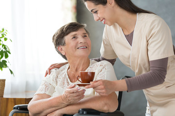 Beautiful helpful nurse is giving tea to smiling elderly lady in a wheelchair at nursing home