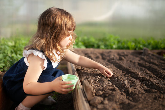 Adorable little girl planting seeds in the ground at the greenhouse