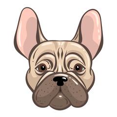 French bulldog vector tatoo style illustration